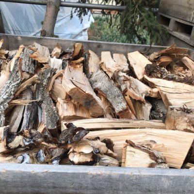 Walnut Firewood